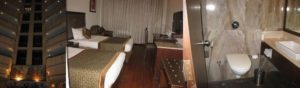 ヒンドゥスタン インターナショナルホテル