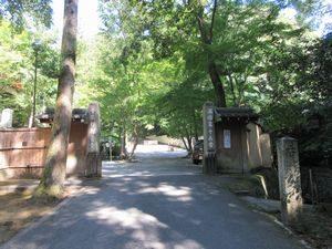 観音寺(今熊野観音寺)